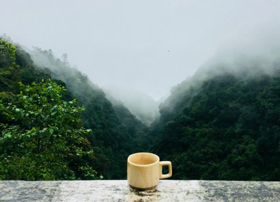Source: High ranges of Chikmagalur! (The birth place of Coffee in India!)